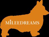 Mileedreams